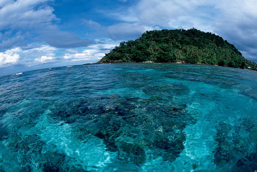 Recifes de corais em Taveuni, Ilhas Fiji, Pacífico