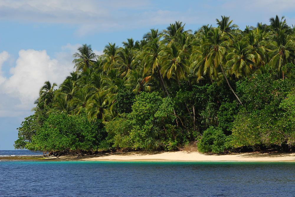 Praia paradisíaca nas Ilhas Salomão, Pacífico