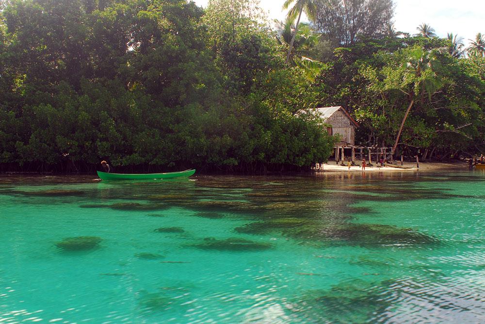 Manguezal preservado nas Ilhas Salomão, Pacífico