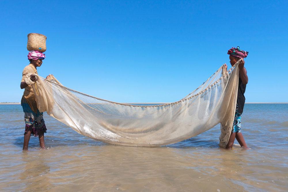 Perda de biodiversidade - pescadores artesanais